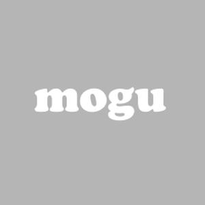 【参加者募集中!】1月由比港漁協でmogu料理教室